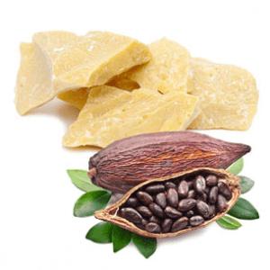 składniki w kosmetykach cannamea - masło kakaowe (cocoa oil)