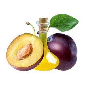 składniki w kosmetykach cannamea - olej śliwkowy (plum oil)